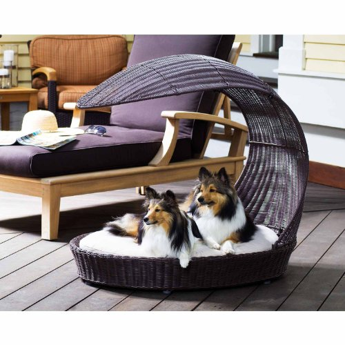Fancy Dog Bed: Amazon.com