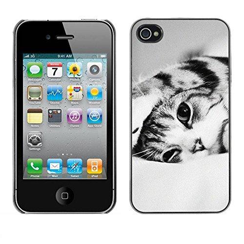 LASTONE PHONE CASE / Coque Housse Etui Shock-Absorption Bumper et Anti-Scratch Effacer Case Cover pour Apple Iphone 4 / 4S / Black White Shorthair Cat