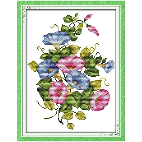 - Zamtac Morning Glory Counted Cross Stitch Handmade Flowers Cross Stitch 11CT 14CT Cross Stitch Kits Embroidery for Needlework - (Cross Stitch Fabric CT Number: 14CT Picture Printed)