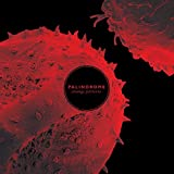 Palindrome: Strange Patterns (Lp+Mp3) [Vinyl LP] (Vinyl)