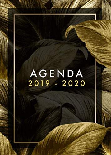 Agenda 2019-2020: Planificador Agenda Semanal Mensual Diario Para Disparar la Productividad, Motivación y Felicidad, julio 2019 a diciembre 2020, flores negras , (Spanish Edition)