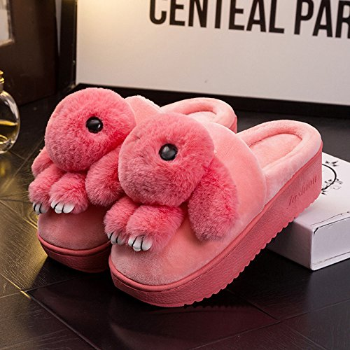 Inverno fankou tacco alto, antiscivolo caldo cotone pantofole pacchetto al coperto per rimanere in spesse con la pendenza della alta scarpe tacco bella ,34-35, artigli rosa scuro
