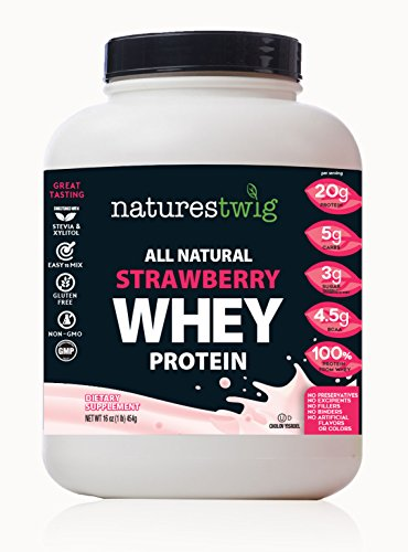 NaturesTwig All Natural Whey Protein (Kosher- Cholov Yisroel)(Strawberry) 16 oz (1lb) 454g For Sale