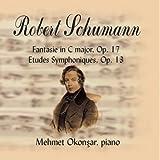 Robert Schumann-Fantasie