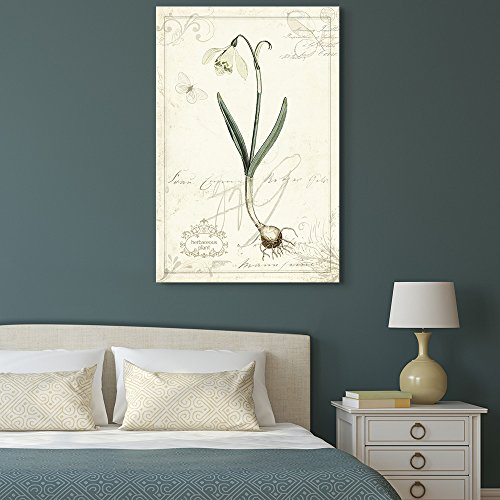 Vintage Style Narcissus Plant