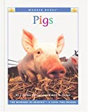 Pigs, Cynthia Fitterer Klingel and Robert B. Noyed, 1567668224