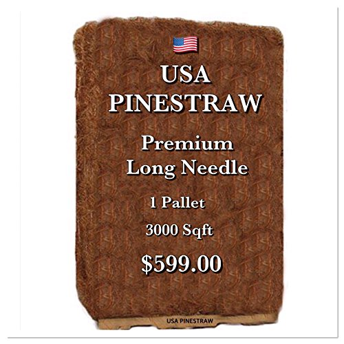 USA Pine Straw - Pine Needle Mulch - Premium Long Needle - Covers 3000 Sqft by USA Pinestraw