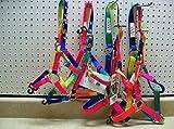 Valhoma Rainbow Nylon Halter Mini Pony Horse Arab Cob Colt Lg Horse (Sm Horse / Arab / Cob 500-800 lbs)
