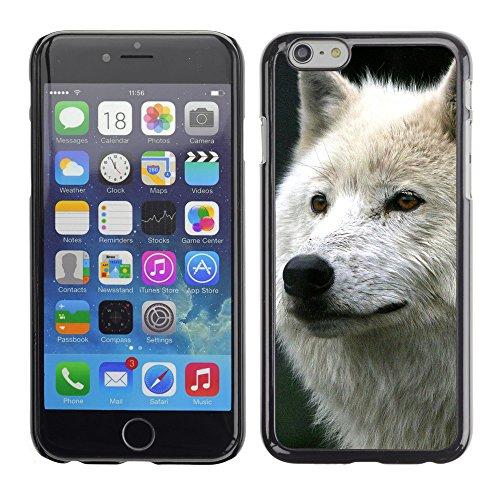 "Premio Sottile Slim Cassa Custodia Case Cover Shell // V00004016 Loup blanc // Apple iPhone 6 6S 6G 4.7"""
