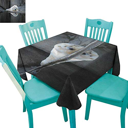 longbuyer Bear,Dinner Picnic Table Cloth,Sleeping Cute Polar Bear at The Zoo with Water Reflection Peaceful Calm Nature,70