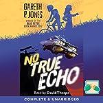 No True Echo | Gareth P Jones