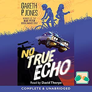 No True Echo Audiobook