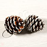 Coobey 24 Pieces Christmas Pine Cones Ornament Natural PineCones With String Pendant Crafts for Gift Tag Christmas Tree Party Hanging Decoration (Snow)