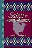 img - for Saints of North America book / textbook / text book