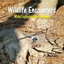 Wildlife Encounters while Exploring the Outdoors