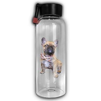 BullDog francés de cristal botella de agua ambiental cilíndrico alta portátil botella de agua de vidrio con cuerda: Amazon.es: Hogar