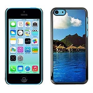 Cubierta de la caja de protección la piel dura para el Apple iPhone 5C - Funny Ghost