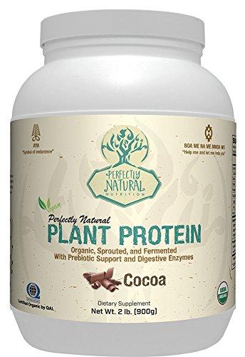 Price comparison product image Perfectly Organic Plant Protein Powder - Preservative Free,  Non-GMO,  Gluten Free