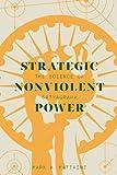 Strategic Nonviolent Power : The Science of Satyagraha, Mattaini, Mark A., 1927356415