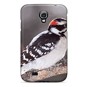 Hot Design Premium KQSrFvw2509cPrXR Tpu Case Cover Galaxy S4 Protection Case(animals Woodpecker)