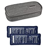 Insulin Cooler Bag Diabetic Organizer Medical Travel Cooler Pack with 2 Ice Pack (Grey)