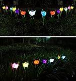 tia-ve tulipano lampada solare giardino illuminazione giardino led luce decorativa per esterni Villa