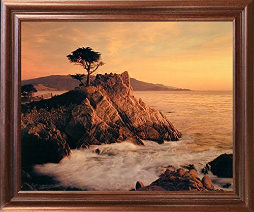 Impact Posters Gallery Scenery Nature Framed Wall Home Decor Lone Cypress Tree Mahogany Art Print Picture (18x22)
