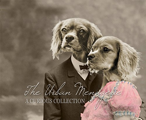 [Anthropomorphic Portrait, King Charles Cavalier Couple Art Print, Multiple Sizes Available,] (Inanimate Object Costume)