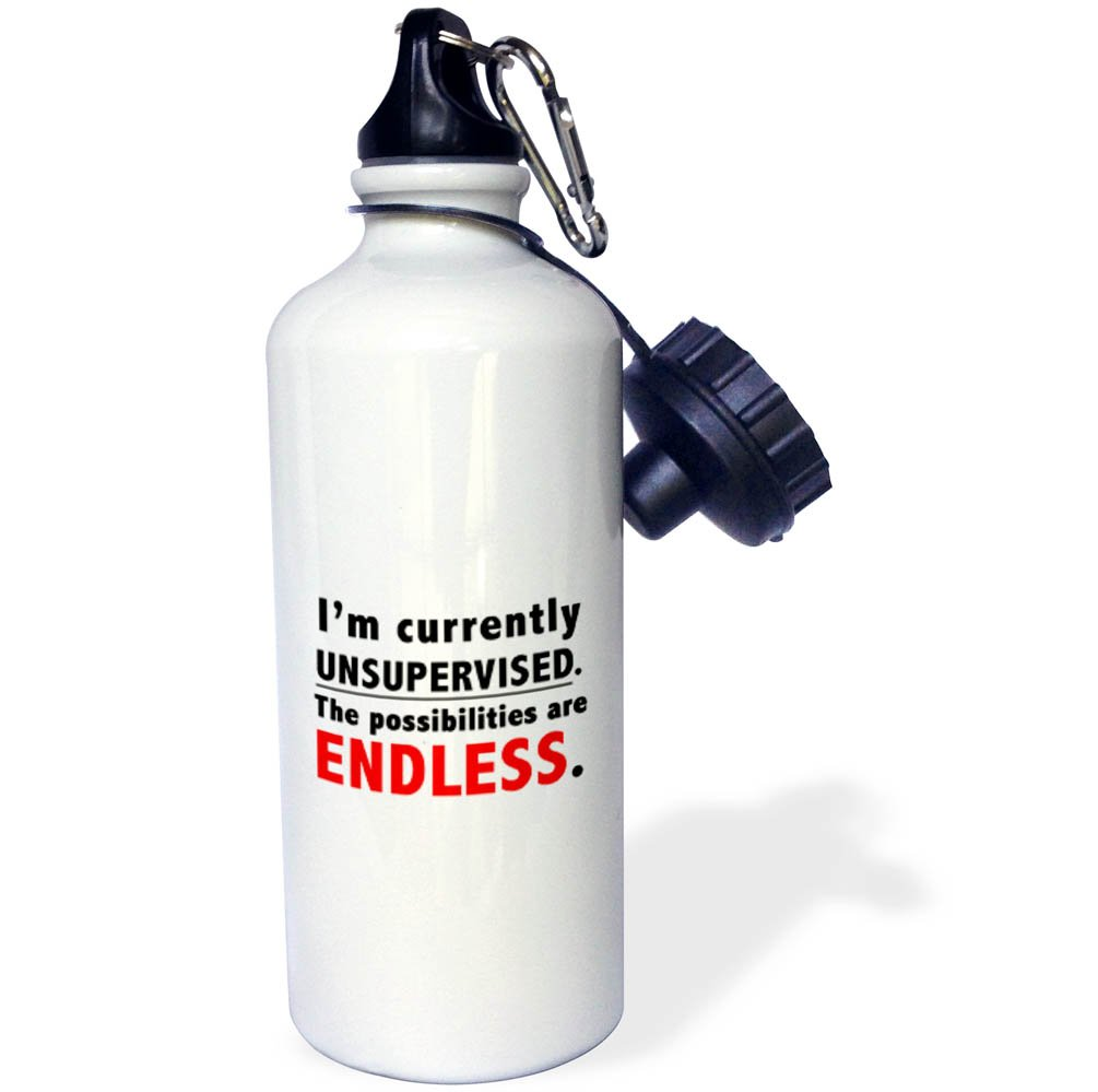 3dRose Tory Anne Collections Quotes IM Currently Unsupervised The Possibilities are Endless wb/_266013/_1 21 oz Sports Water Bottle