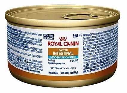 ROYAL CANIN Feline gastrointestinai bocadillos de calorías moderadas en salsa (24/3 oz)