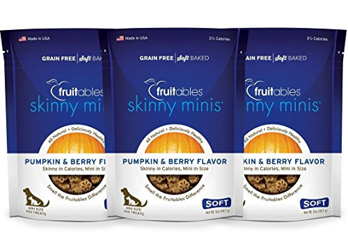 Berry Treat - Fruitables Skinny Minis Pumpkin and Berry Low Calorie Soft and Chewy Training Treat Pack of 3
