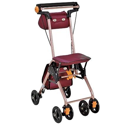 Accesorios para andadores con ruedas Caminante Caminante Plegable Carro De La Compra Portátil Carro Mayor Scooter