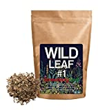 Wild Foods Strawberry Leaf #1 Dried Herbal Leaves for Tea, Infusions, Ointments, Creams, Bodycare (4 ounce)