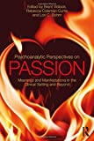 img - for Psychoanalytic Perspectives on Passion: Meanings and Manifestations in the Clinical Setting and Beyond book / textbook / text book
