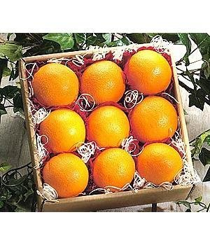California Navel Oranges By Cherry Moon Farms