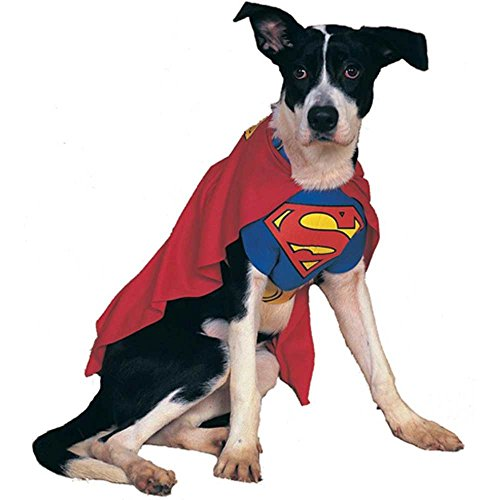 Superman Costumes Variations (Superman Pet Costume)