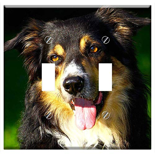 Switch Plate Double Toggle - Dog Border Collie Portrait
