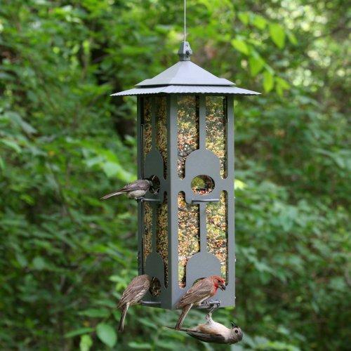 Outdoor seasons squirrel be gone iii bird feeder-4062