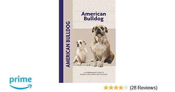 American Bulldog (Comprehensive Owner's Guide): Abe Fishman