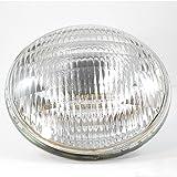 300W 120V PAR56 Medium Flood Bulb