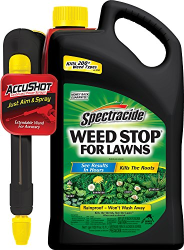 Spectracide 96464 Weed Stop Accushot Spray