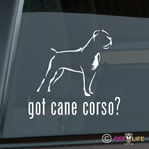 Got Cane Corso Sticker Vinyl Auto Window v2