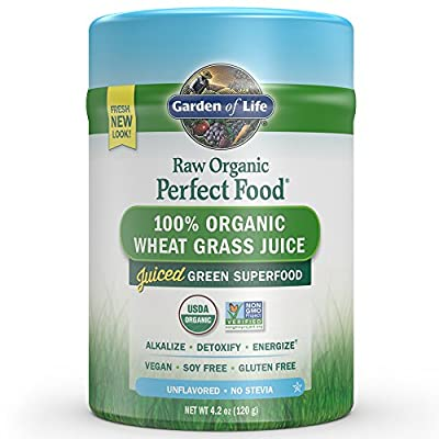 Garden of Life Vegan Green Superfood Powder - Raw Organic Perfect Whole Food Wheat Grass Dietary Supplement, 4.2oz (120g) Powder