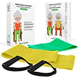 Healthy Seniors Strength Chair Exercise Program with two resistance bands, handles and printed exercise guide- includes video exercises. Ideal for rehab or physical therapy. Perfect gift for elderly.