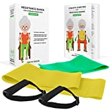 Healthy Seniors Chair Exercise Program with two resistance bands, handles and printed exercise guide- includes video exercises. Ideal for rehab or physical therapy. Perfect gift for grandma or grandpa Review