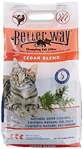with Natural Litter design