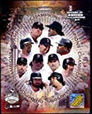 Boston Red Sox - 2004 World Series Champions LIMITED EDITION (GOLD - produced only 5000) - MLB Color 8x10 Photo