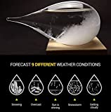 meisou Weather Predicting Globe Drop Display Desktop Ornament Storm Glass Forecast Bottle Barometer Thermometer with Stand