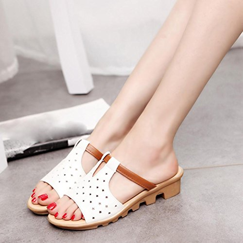 Women Summer Female Sandals, Anti-Skid Five-Star Casual Slippers - Fashion Solid Beach Slides Slippers Shoes White