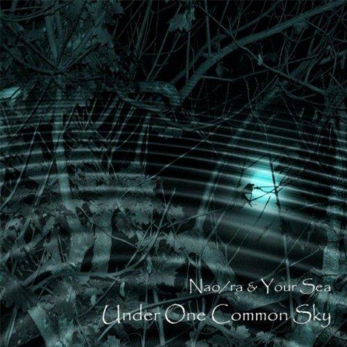 under-one-common-sky
